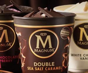 Magnum Ice Cream Pints USA distributor